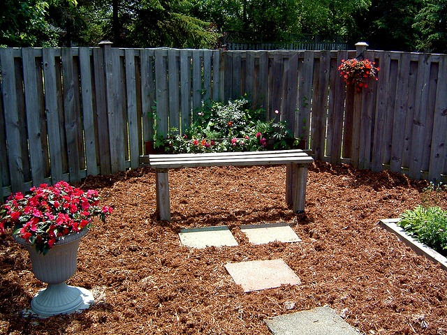 Everything You Wanted To Know About Mulch