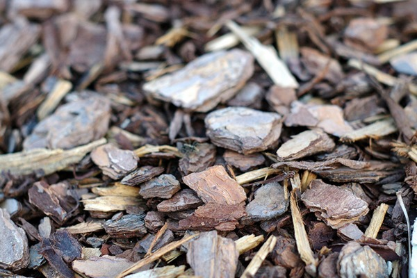 The Five Most Popular Types of Mulches